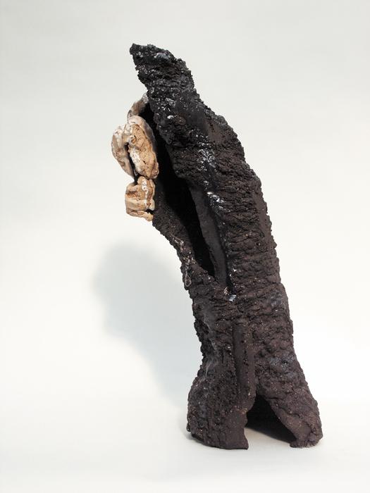 Spécimen n°1 – céramique – 58x21x20 cm – 2005